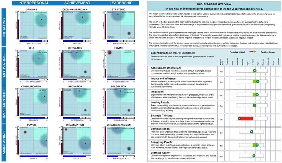 Sample Leader Assessments